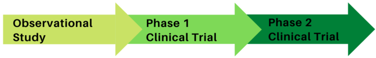 3 phase trial